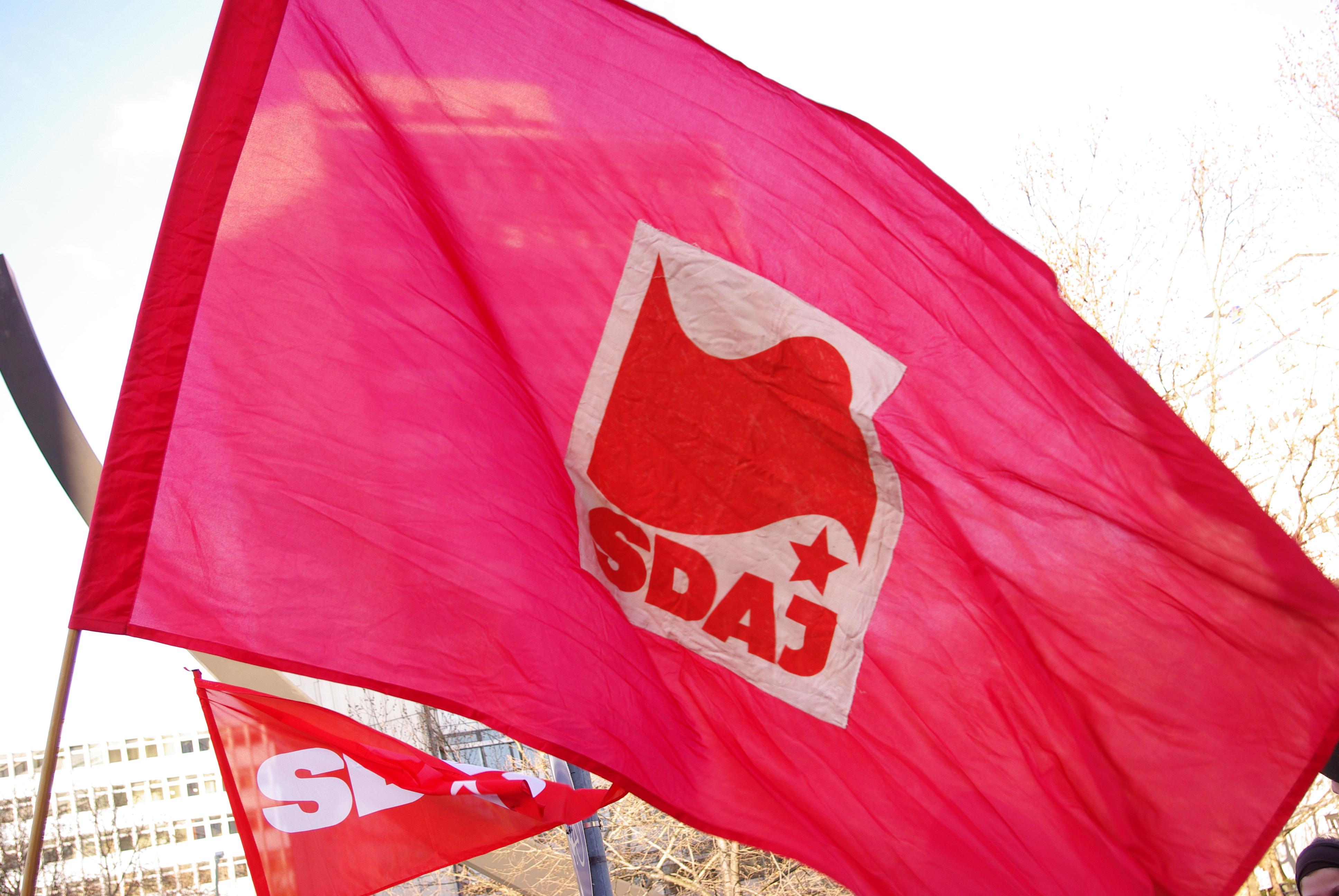 XIX. Bundeskongress der SDAJ: Jugend gegen die Krise