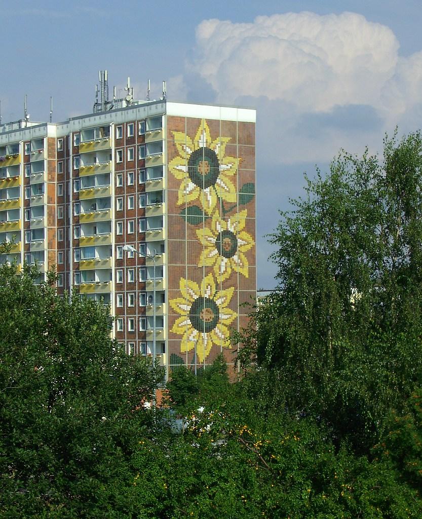 Rostock: Konsequent gegen Rassismus heißt für den Sozialismus