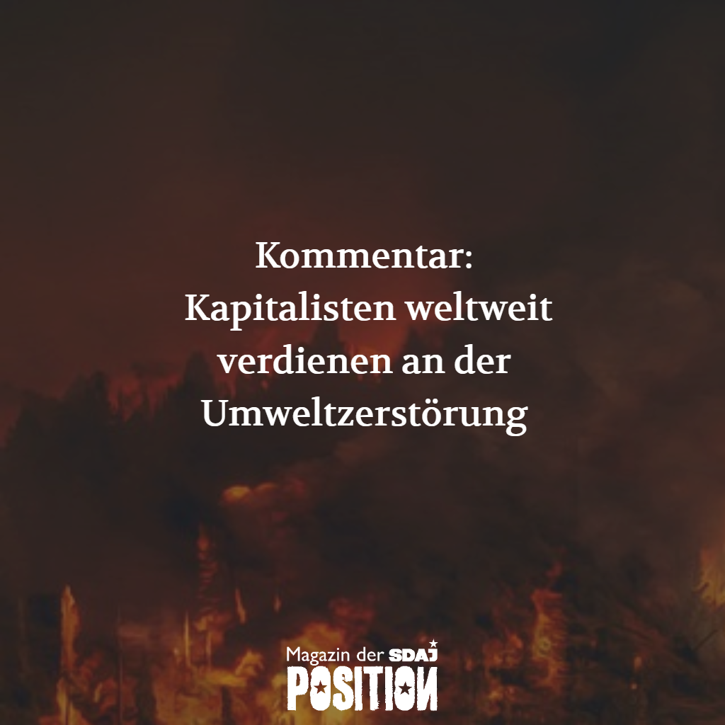 Unsere Lunge brennt (POSITION #04/19)