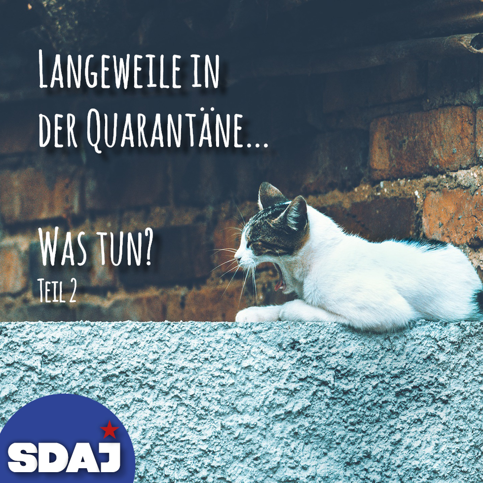 Quarantäne – Was tun? (Teil II)