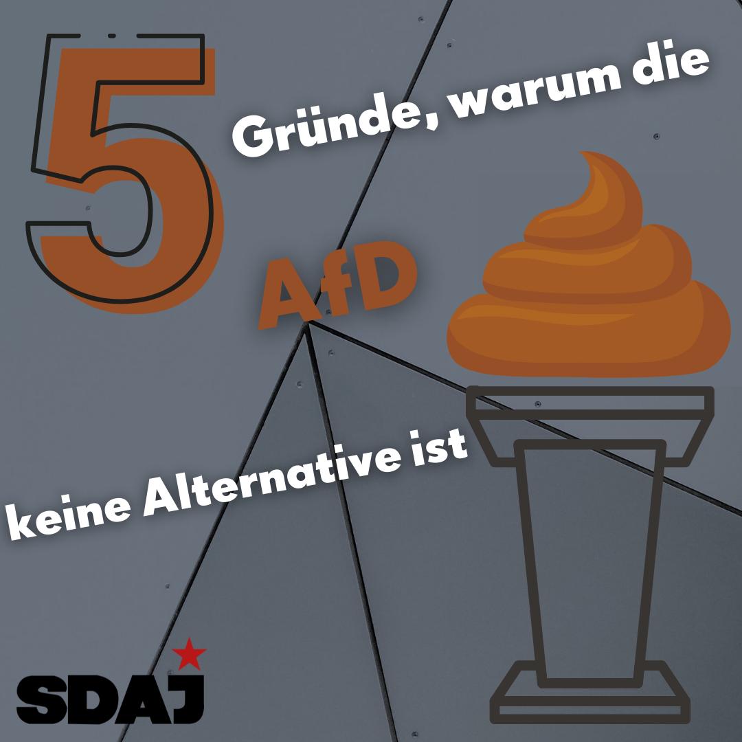 5 Gründe warum die AfD keine Alternative ist